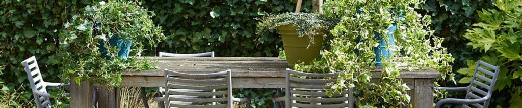 tafel vol planten