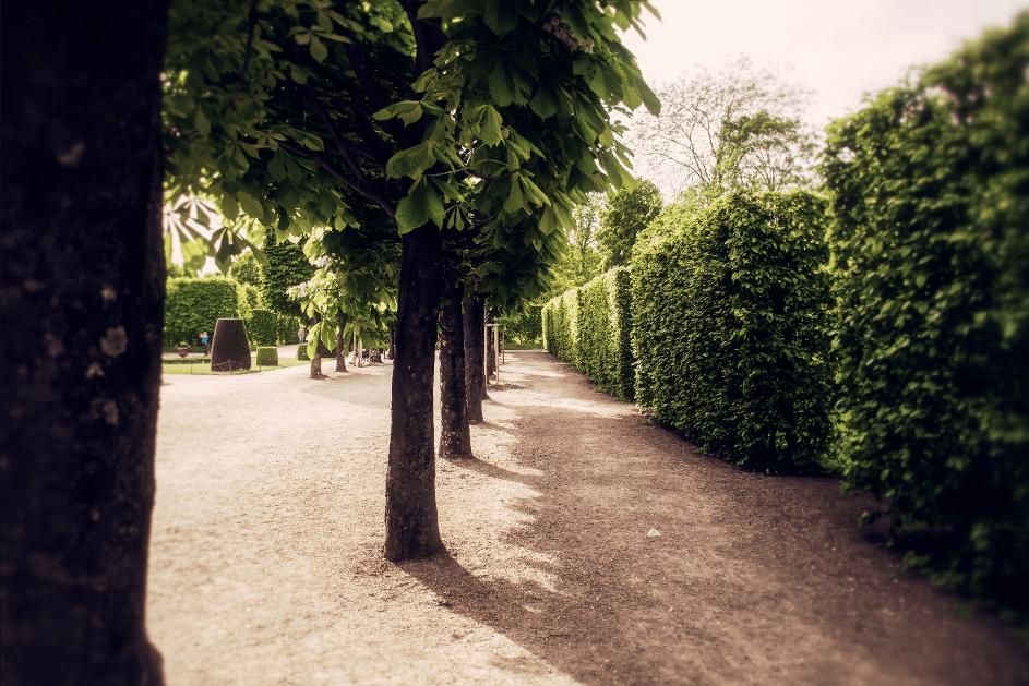 schaduw in je tuin
